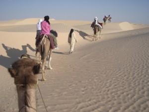 vacances toussaint TUNISIE