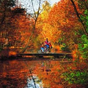 vélo automne