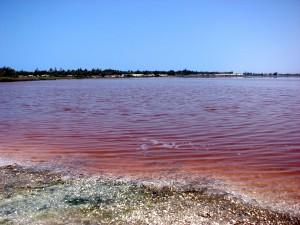 Lac rose Sénégal