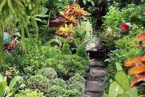 philippines-jardin