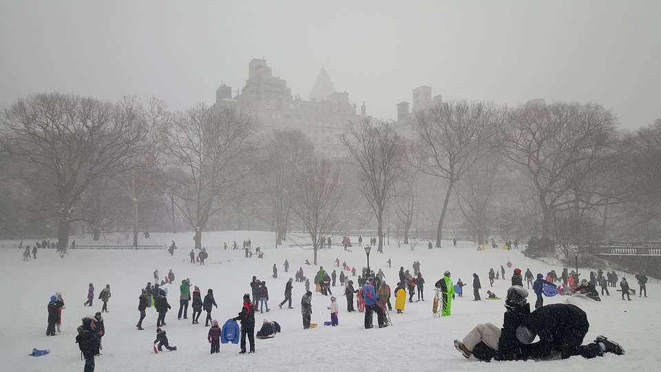 Un hiver à NYC (New Yor City) sous la neige